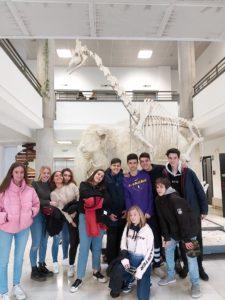Visita Museo de Anatomía Comparada de Vertebrados